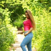 Солнечное лето 2017 :: Надежда Журавкова
