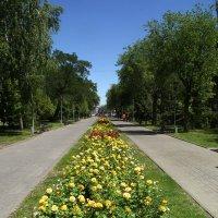 Проспект :: Alexander Varykhanov