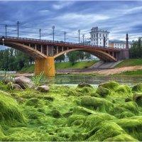 Обнажённое дно реки :: Алексей Румянцев