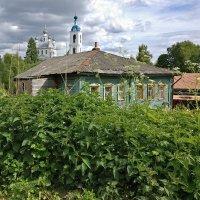 Крапивное лето ярославской окраины, в Песочном-Толгоболе :: Николай Белавин