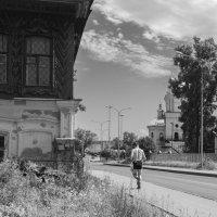 Пробежка в жаркий день :: Валерий Михмель