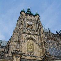 Собор Святого Вита. Прага :: leo yagonen