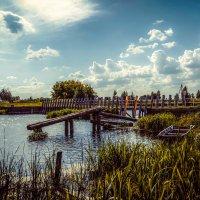 У старой деревенской плотины............ :: Александр Селезнев