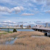 Осака мосты через реку Yodo :: Swetlana V