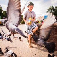 малыш и голуби :: Andrey Stanislavovich
