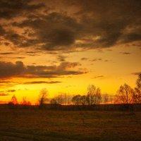 Gold of Nature. :: Андрий Майковский