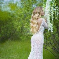 Девушка в белом :: Любовь Дашевская