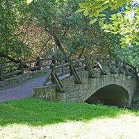 Старинный мостик :: Евгений