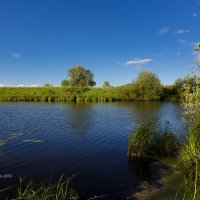 Летний пейзаж с речкой :: Александр Синдерёв
