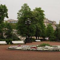 Санкт-Петербург. Екатерининский сквер. :: sav-al-v Савченко