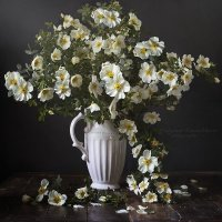 Букет из белого шиповника :: Татьяна Карачкова