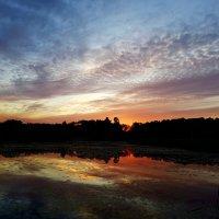 Тихий летний вечер у озера... :: Ольга Русанова (olg-rusanowa2010)
