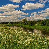 Лето, Клязьма, облака 2 :: Андрей Дворников