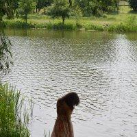Грусть... :: Тамара Бедай