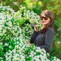 Цветущие сады города :: Анна Дрючкова