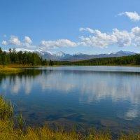 Тихо на озере. :: Валерий Медведев