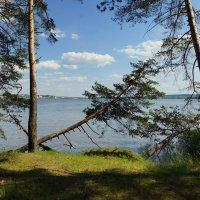 Воткинский пруд :: Исаков Александр