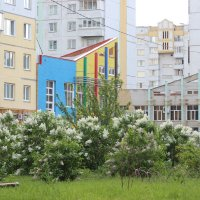 Двор :: Вячеслав & Алёна Макаренины