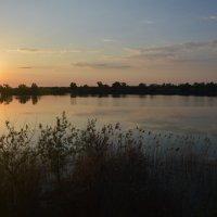 Вечерняя рыбалка. С приятным видом. :: Виктор