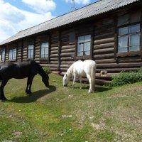 Одно из наиболее старых зданий посёлка :: Галина