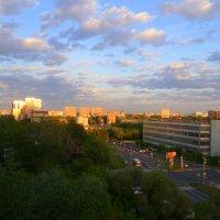 Городской пейзаж :: Ольга (crim41evp)