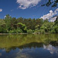 Озеро. :: Valeri Verovets