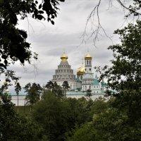 Ново-иерусалимский монастырь :: Ирина Шурлапова