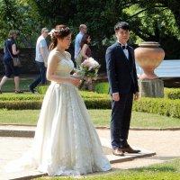 Выйти замуж в Праге... :: Елена Гуляева (mashagulena)