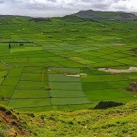 Azores 2018 Terceira 13 :: Arturs Ancans