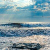 Море и солнце. :: Владимир Лазарев