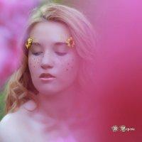 """Фотопроект """"Аленький цветочек"""" :: Наталья Попова"""