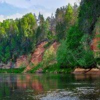 Река Плюсса :: Александр Гапоненко