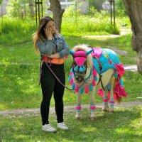Девушка и пони. :: Александр Зуев
