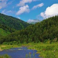Лето в горах :: Сергей Чиняев