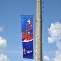ЧМ мира по футболу :: Лариса Вишневская