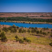 степной пейзаж :: Алина Гриб