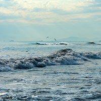 Черное море. Дивноморское. :: Владимир Лазарев