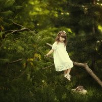 Сказочный лес :: Наталья Плющ