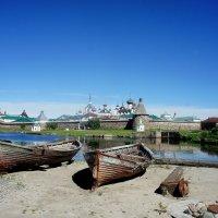 Вид на Спасо-Преображенский Соловецкий монастырь с Сельдяного мыса :: Елена Павлова (Смолова)