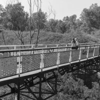 Чертов мост :: Валерий Михмель