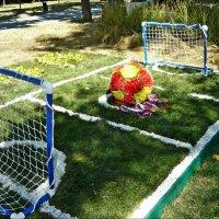 Цветочно-травяное футбольное поле! :: Надежда