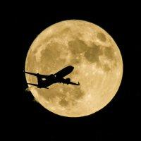 в лунном сиянии :: Петр Беляков