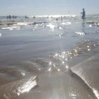 На море :: Дима
