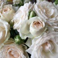 ,,Как хороши,как свежи были розы...,, :: Татьяна Калинкина
