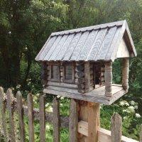 столовая для птиц :: Евгения Куприянова