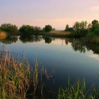 Застыло озеро стеклом... :: Нэля Лысенко
