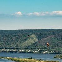 Волга и Жигули... гордо реют птицы... :: Наталья Меркулова