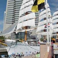 """Океанский лебедь """"Nippon Maru"""" Иокогама Япония :: Swetlana V"""