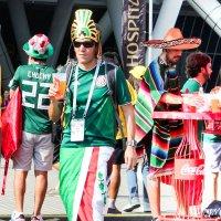 Самара-Арена матч Бразилия-Мексика 2 июля 2018. :: Ольга Зубова