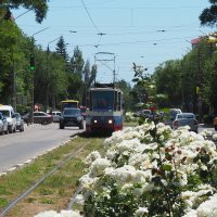 Евпаторийский трамвайчик :: Павел Савин
